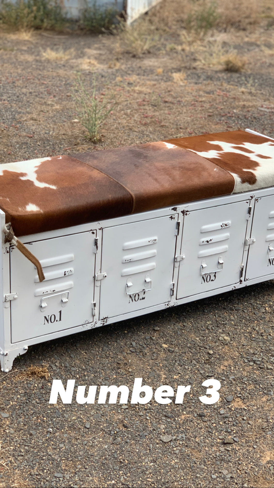 Cowhide and Metal Storage Bench Seat