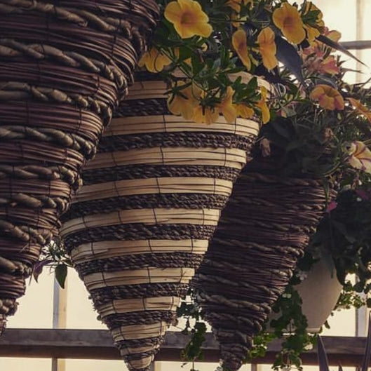 Assorted Cone Hanging Baskets