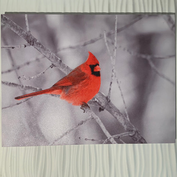 Canvas LED With Red Cardinal