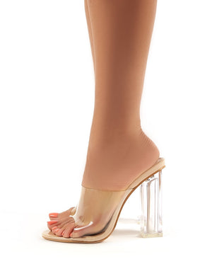 Fushion Perspex Mules in Nude