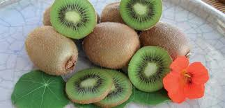 Kiwi Fruit - Hayward Female 10 ltr
