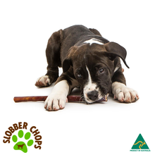 Load image into Gallery viewer, BEEF PIZZLE / BULLY STICK - DOG TREATS