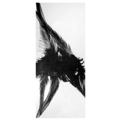 THREE FEATHERS - BLACK