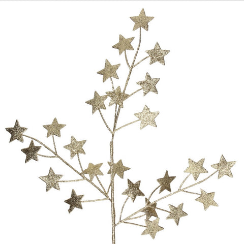 Super sparkly gold star spray