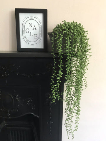 string of pearls premium faux plant in pot