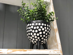Spotted planter on legs