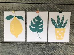 Trio of prints - lemon & green