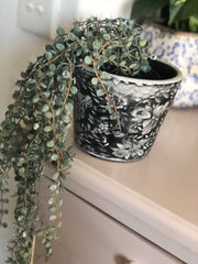 Senecio faux plant in pot