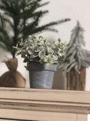 frosted faux plant in zinc pot