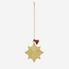 Iron hanging gold star