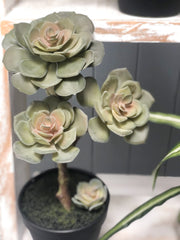 Faux succulent in pot