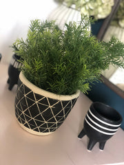 Faux rosemary spray