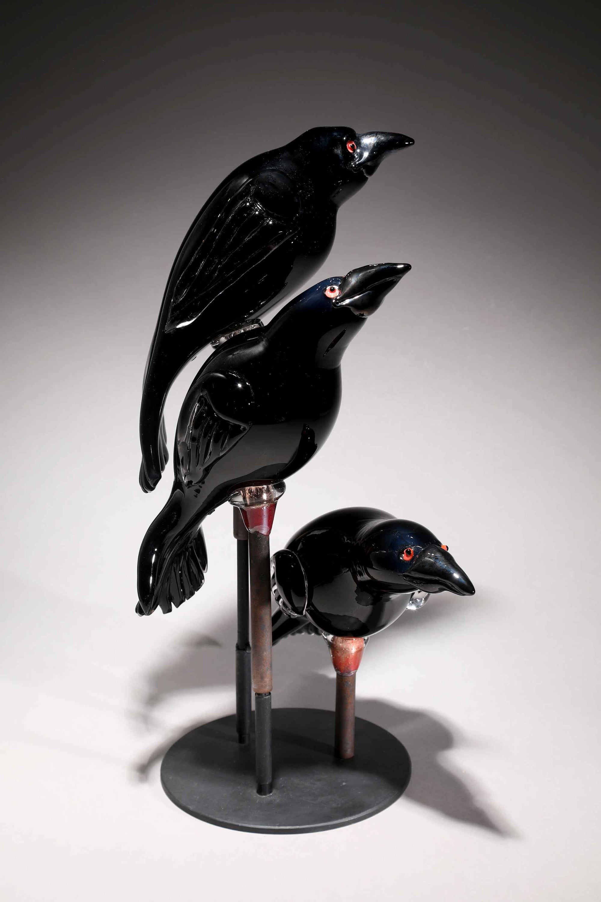 Bird Raven Arrangement