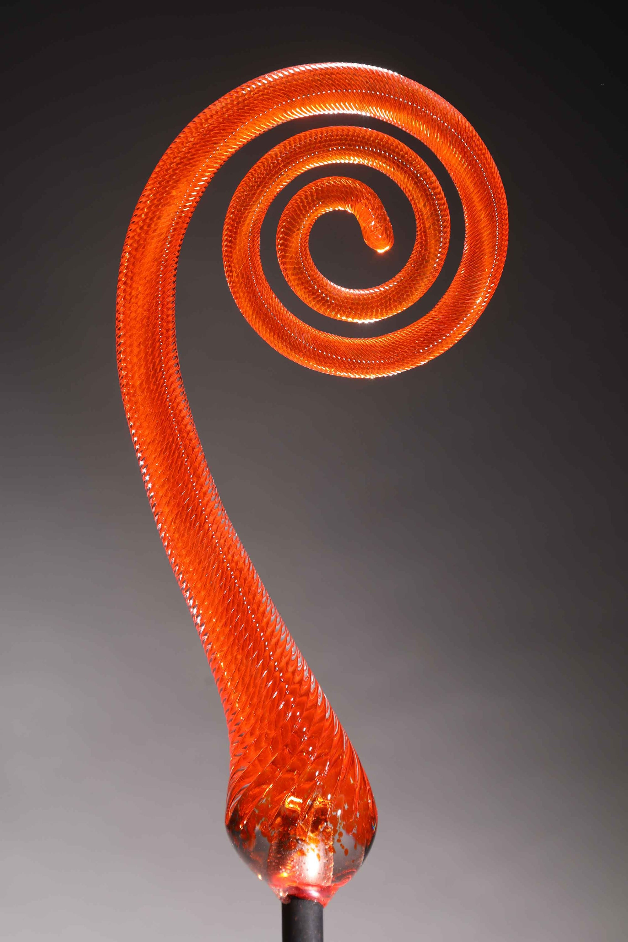 Fern Scroll Orange