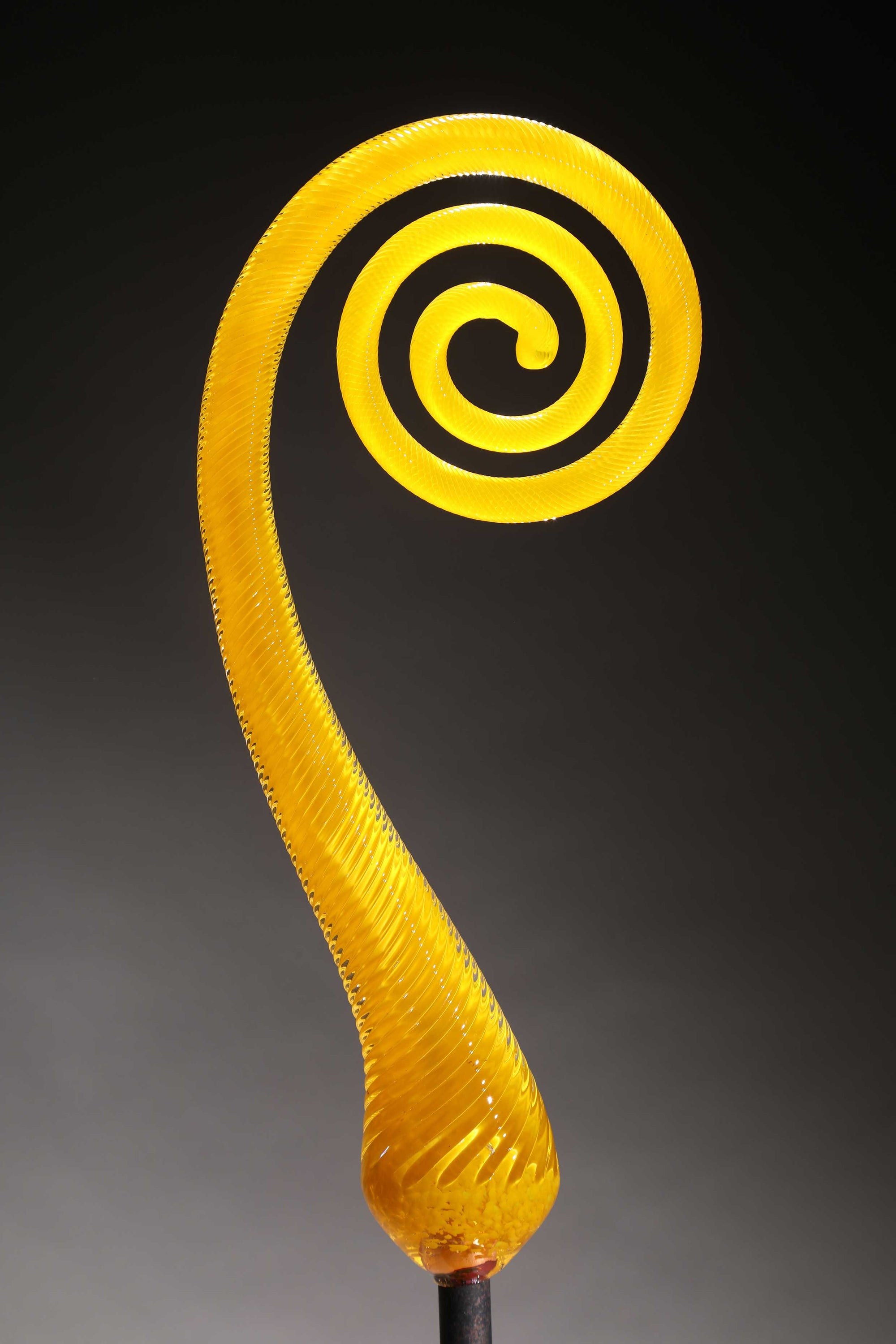 Fern Scroll Yellow