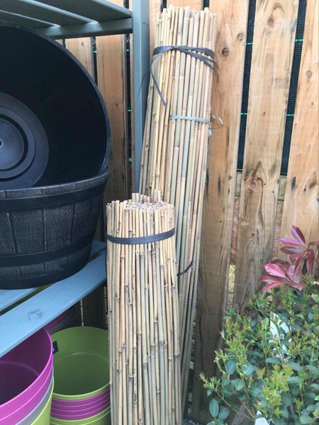 Crafty Gardens Bamboo Cane Plant Supports