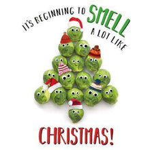Load image into Gallery viewer, Crafty Gardens & Drones Stones Xmas Packs Christmas Sprouts Christmas Card - Christmas Sprouts 11832A 5021926118322