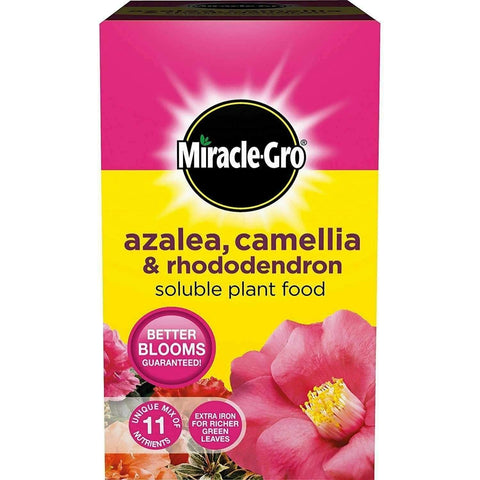 Crafty Gardens Miracle-Gro Azalea, Camellia & Rhododendron Soluble Plant Food - 1kg