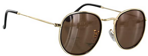 Hudson Polarized Black/Brown