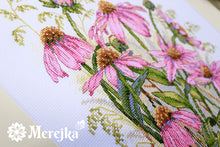 Load image into Gallery viewer, Coneflowers