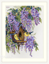 Load image into Gallery viewer, Wisteria