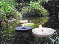Large Pond Candles