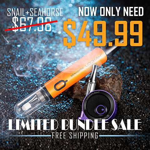 Limited Bundle Sale - SNAIL+SEAHORSE - LOOKAHGLASS