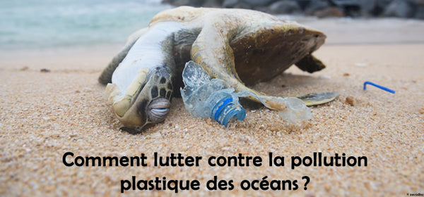 pollution ocean plastique
