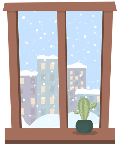 Cactus on winter windowsill with snow outside