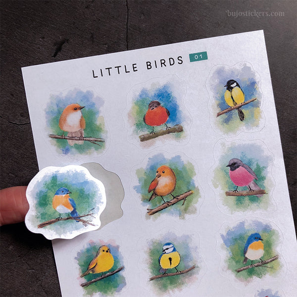 Little Birds 01