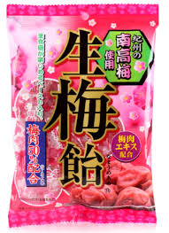 Nama Ume (Sour Plum) Candy / 生梅飴 110g - Konbiniya Japan Centre