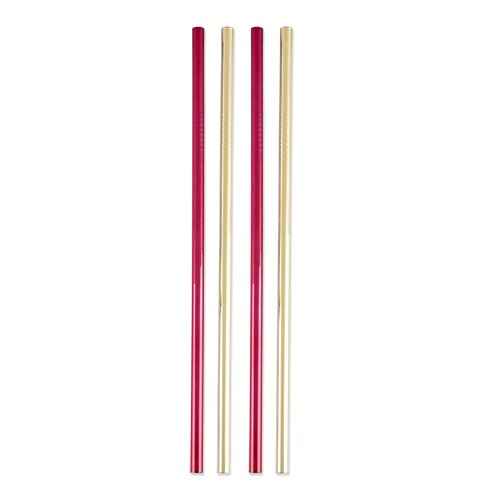 Twine Holiday Stainless Straws