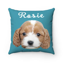 Load image into Gallery viewer, Teal Custom Dog Pillow