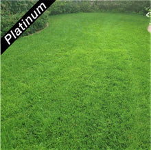 Load image into Gallery viewer, Beautiful lawn featuring 4th Millennium SRP turf-type, tall fescue, Platinum Quality seed.