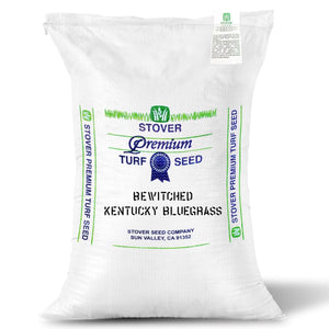 Grass seed bag of Bewitched Kentucky Bluegrass Platinum Quality seed.