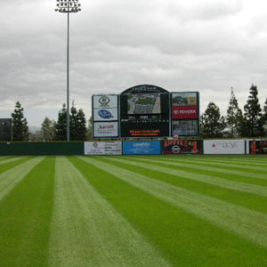 Grand Slam Perennial Ryegrass Blend used on professional sports field