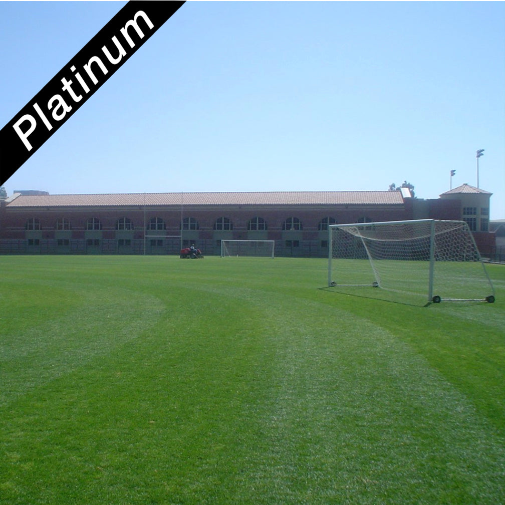 Soccer sports field grown from Bewitched Kentucky bluegrass Platinum Quality turf grass seed.