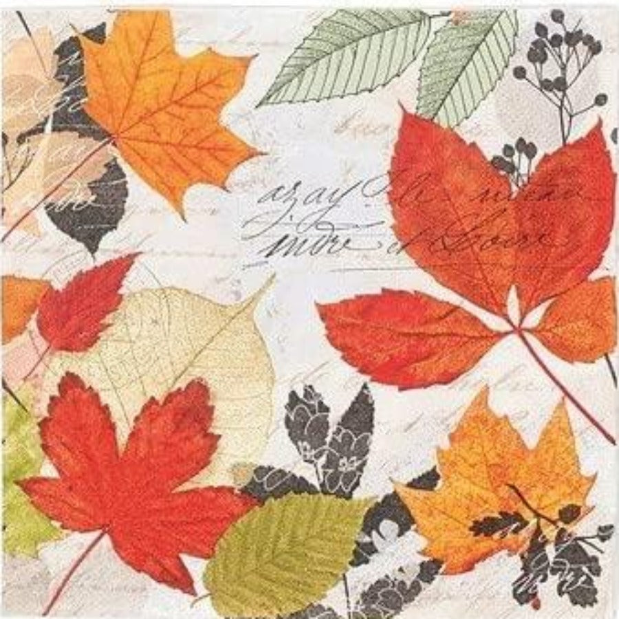 Cocktail Napkins - Herbarium