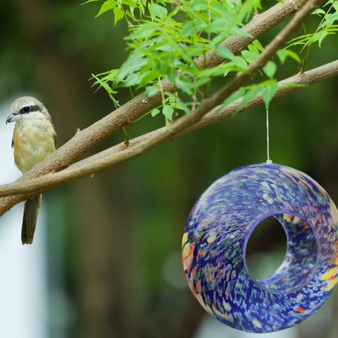 Hanging Bird Feeders
