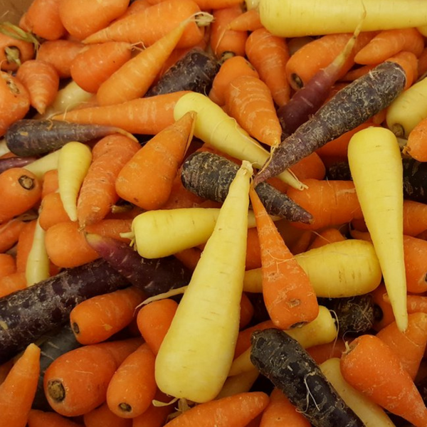 Mixed Chantenay Carrots - 500g