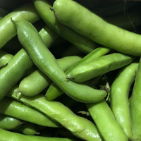Broad Beans - UK - 600g