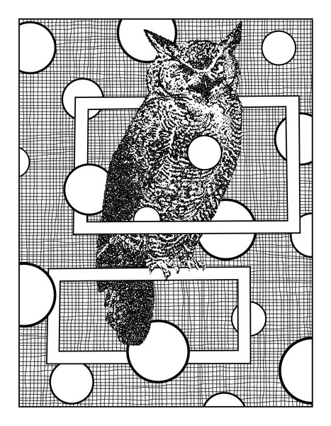 FREE Owl Digital Coloring Page