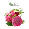 Penang Grocery Store Online Next Day Delivery is Offering Red Dragon Fruit 火龙果(红) (2 Pcs)