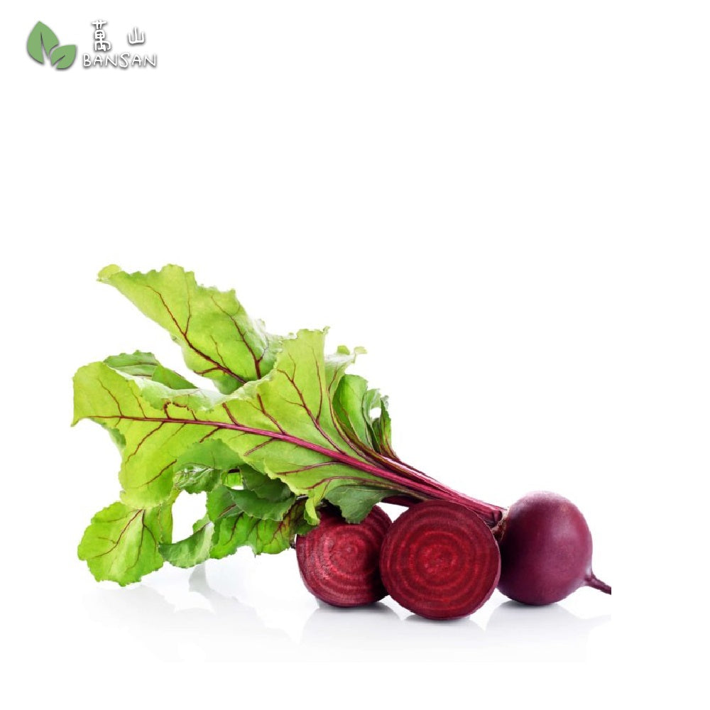 Penang Grocery Store Online Next Day Delivery is Offering Beetroot 甜菜根 (500g)
