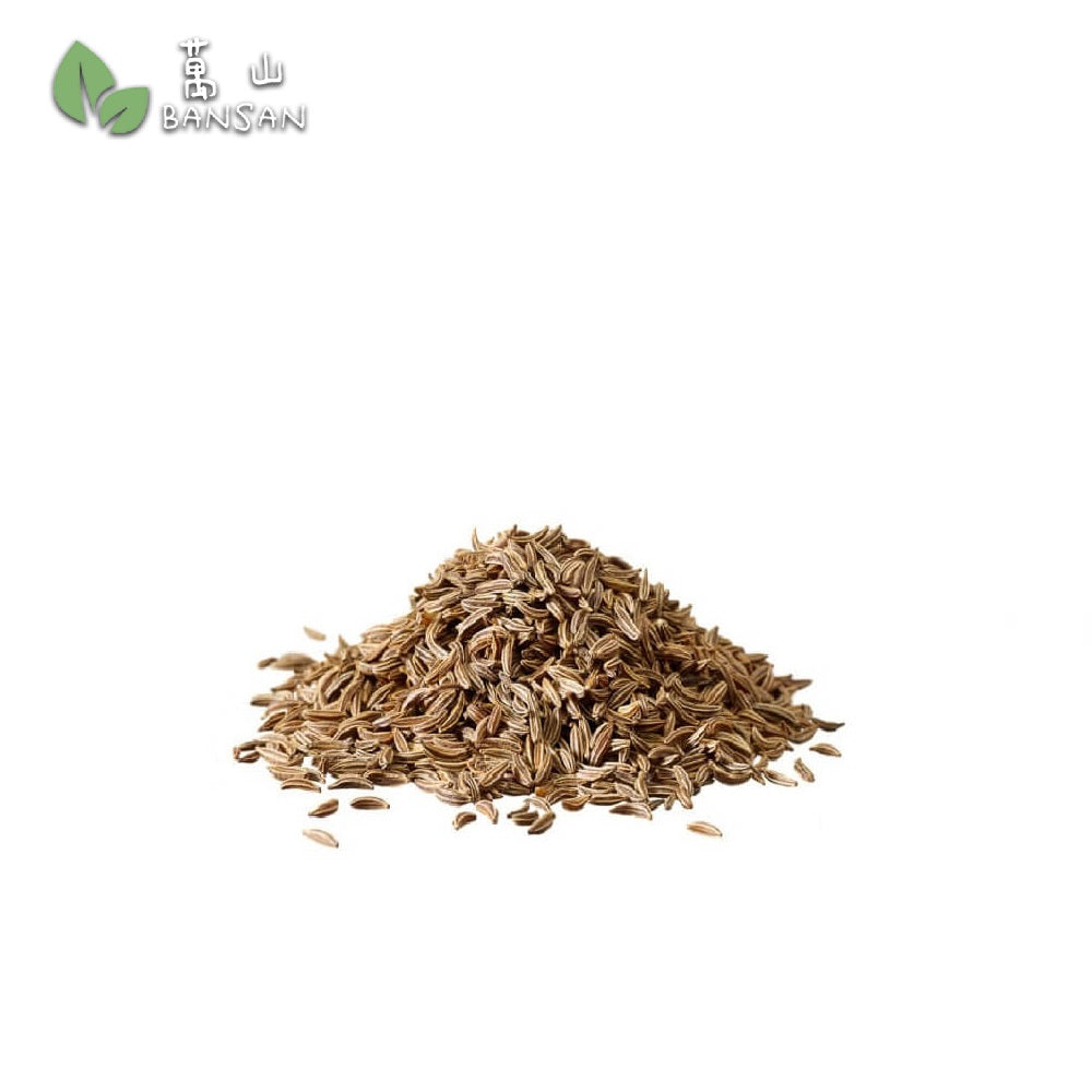Penang Grocery Store Online Next Day Delivery is Offering Cumin/ Jintan Putih Biji (小茴香粒) (+/-100g)