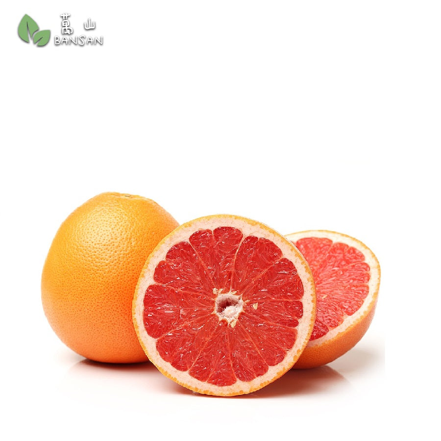 Penang Grocery Store Online Next Day Delivery is Offering South Africa Grapefruits 南非葡萄柚 [3pcs x 1 pack]