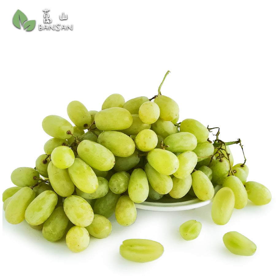 Penang Grocery Store Online Next Day Delivery is Offering US Sweet Globe Green Seedless 美国甜青葡萄无子 (400g)