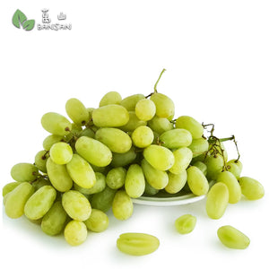 Penang Grocery Store Online Next Day Delivery is Offering India Sonaka Green Seedless 印度青葡萄无子 (500g)