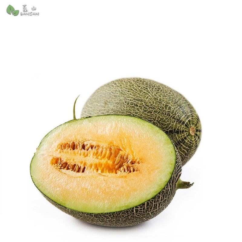 Penang Grocery Store Online Next Day Delivery is Offering China Hami Melon 中国哈密瓜 (1 pcs) (1.4 kg+/-)