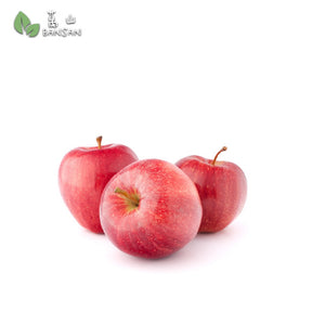 Penang Grocery Store Online Next Day Delivery is Offering Korean Red Fuji Apple 韩国富士红苹果 (4 pcs) (XL size)